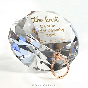 Noam Carver Award
